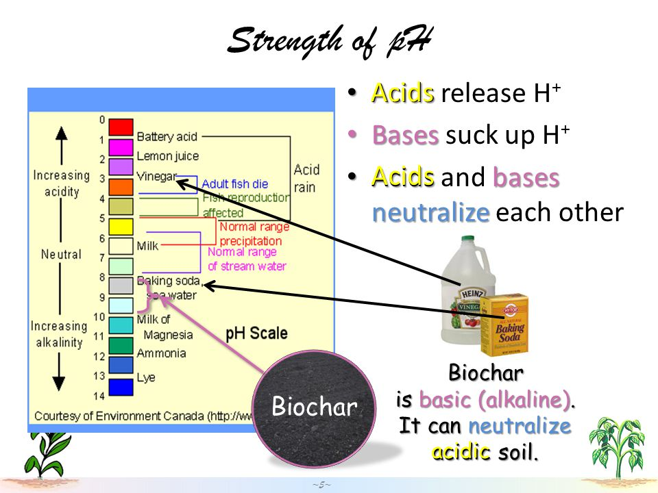 Strength of pH Acids Acids release H + Bases Bases suck up H + Acidsbases neutralize Acids and bases neutralize each other ~5~ Biochar is basic (alkaline).
