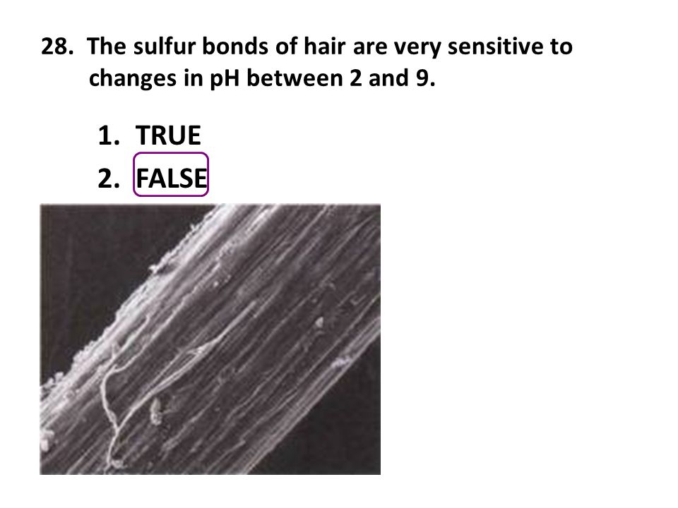 28. The sulfur bonds of hair are very sensitive to changes in pH between 2 and 9. 1.TRUE 2.FALSE