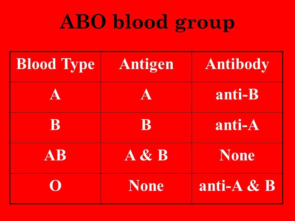 ABO blood group Blood TypeAntigenAntibody AAanti-B BBanti-A ABA & BNone O anti-A & B