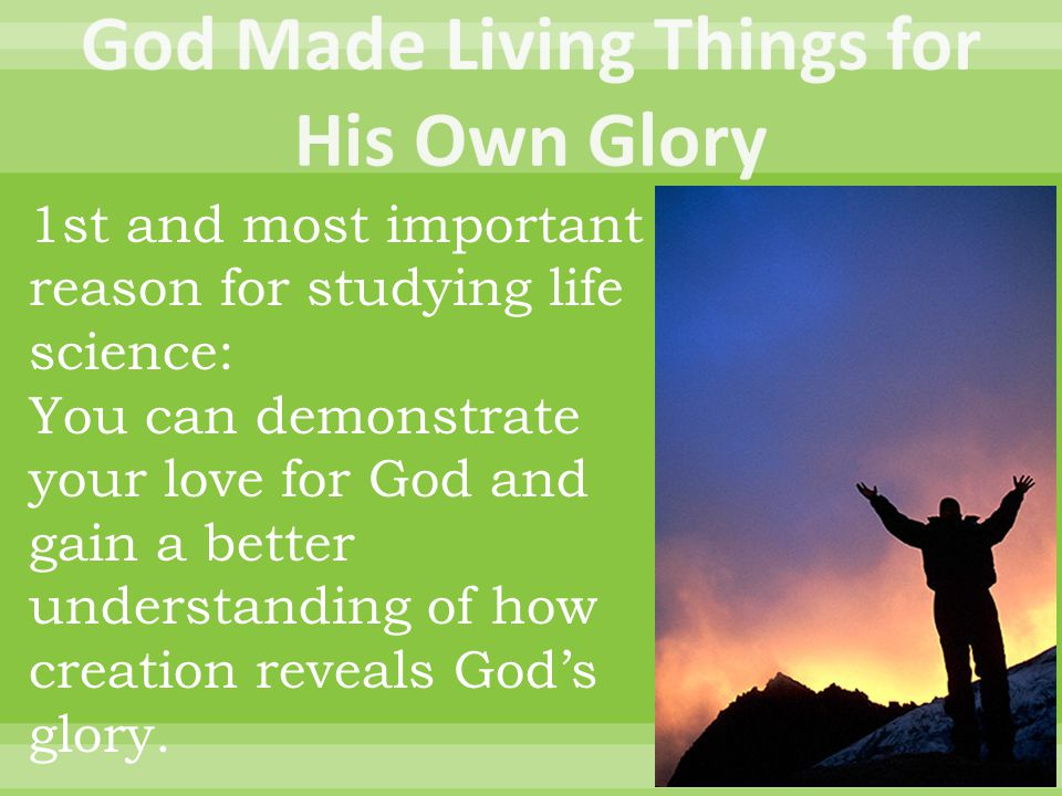 1st and most important reason for studying life science: You can demonstrate your love for God and gain a better understanding of how creation reveals God's glory.