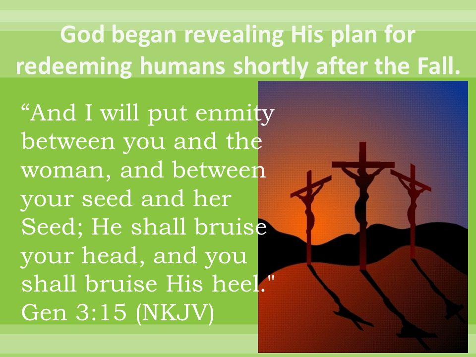 And I will put enmity between you and the woman, and between your seed and her Seed; He shall bruise your head, and you shall bruise His heel. Gen 3:15 (NKJV)