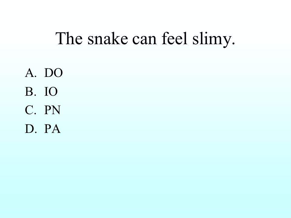 The snake can feel slimy. A.DO B.IO C.PN D.PA