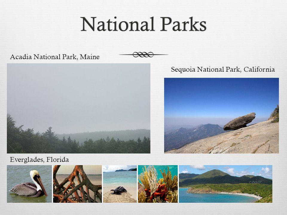 National ParksNational Parks Acadia National Park, Maine Everglades, Florida Sequoia National Park, California