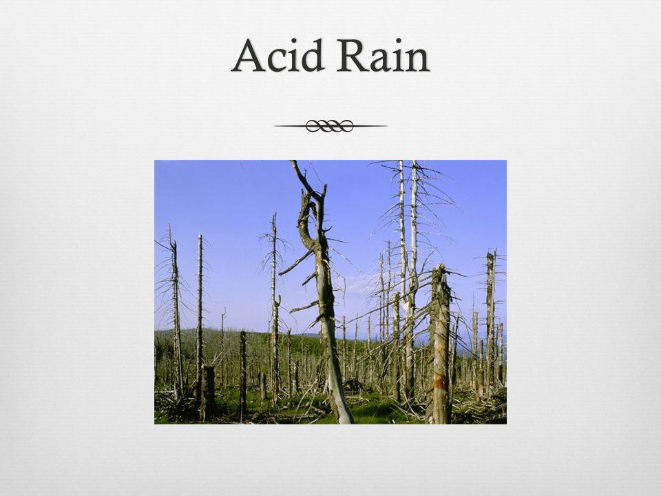 Acid RainAcid Rain