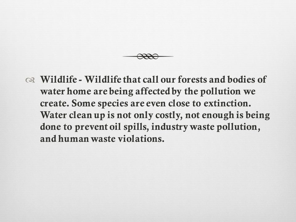  Wildlife - Wildlife that call our forests and bodies of water home are being affected by the pollution we create.