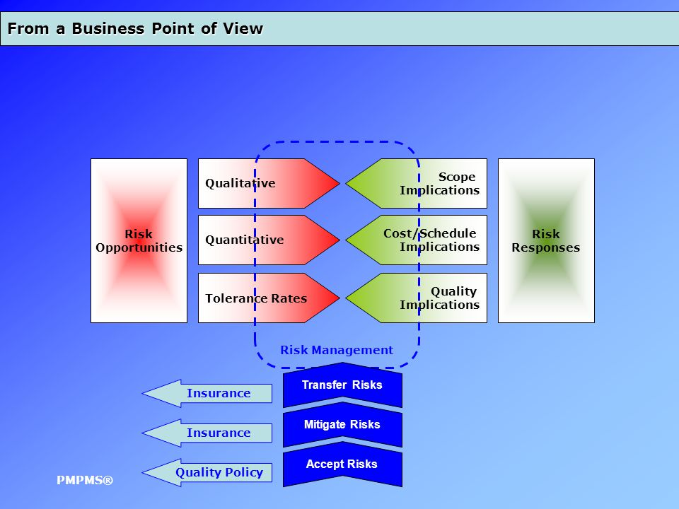 From a Business Point of View Risk Opportunities Qualitative Quantitative Tolerance Rates PMPMS® Scope Implications Cost/Schedule Implications Quality Implications Risk Management Risk Responses Mitigate Risks Transfer Risks Accept Risks Insurance Quality Policy