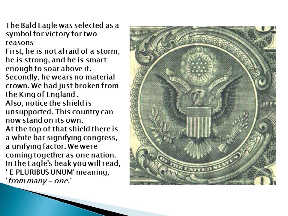 The Bald Eagle was selected as a symbol for victory for two reasons: First, he is not afraid of a storm; he is strong, and he is smart enough to soar above it.