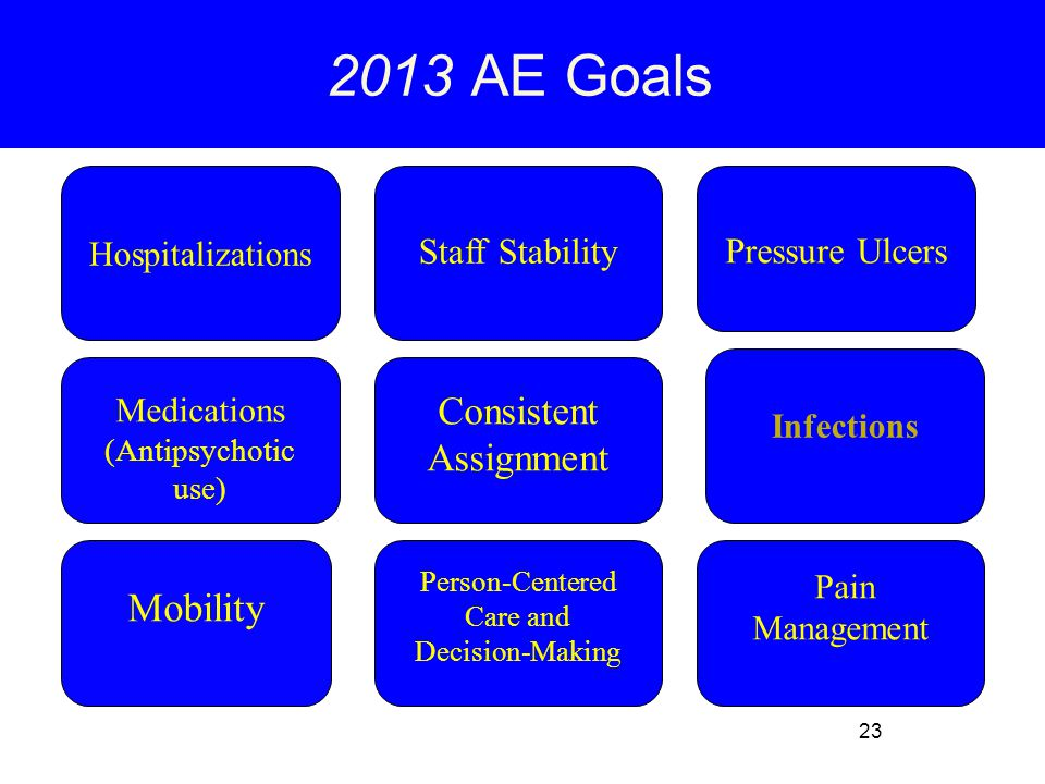 23 Mobility Person-Centered Care and Decision-Making Consistent Assignment Infections Pressure Ulcers Staff Stability Medications (Antipsychotic use) Hospitalizations 2013 AE Goals Pain Management