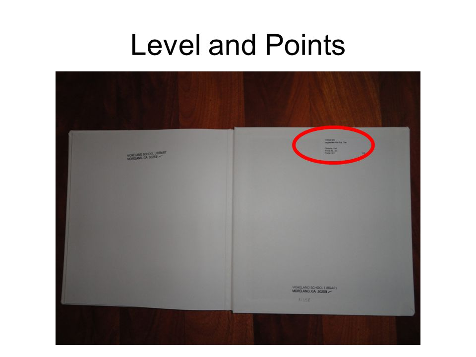 Level and Points