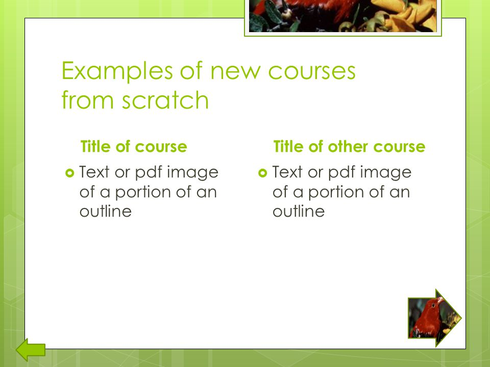 Examples of new courses from scratch Title of course  Text or pdf image of a portion of an outline Title of other course  Text or pdf image of a portion of an outline