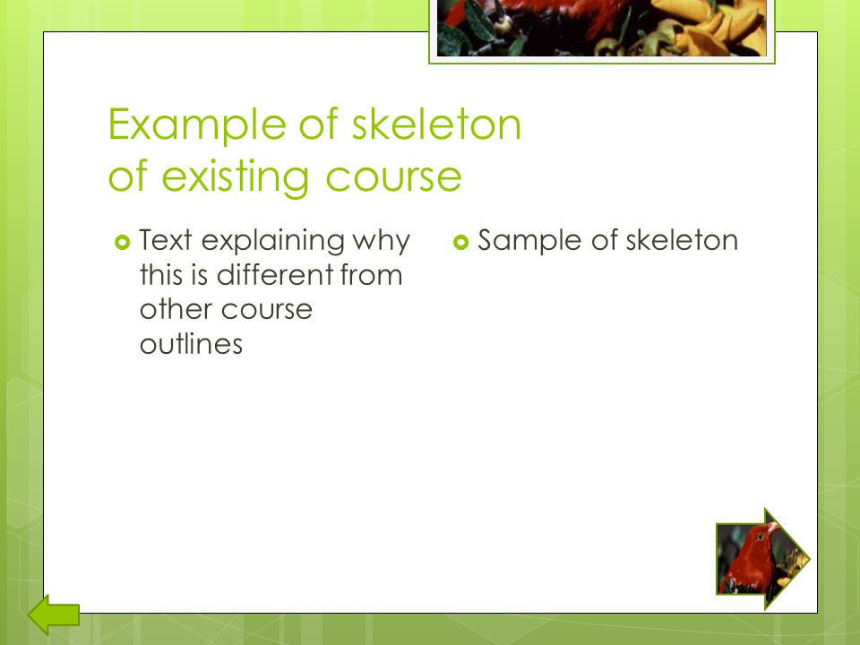 Example of skeleton of existing course  Text explaining why this is different from other course outlines  Sample of skeleton