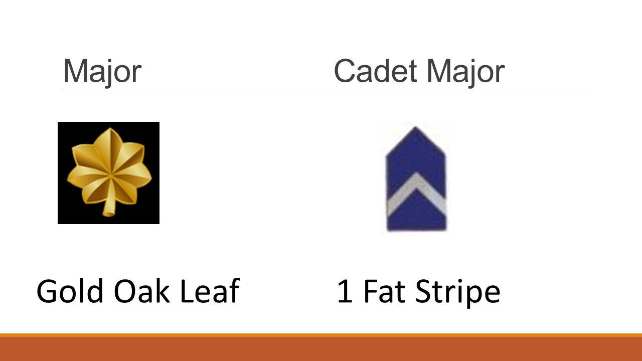 MajorCadet Major Gold Oak Leaf1 Fat Stripe