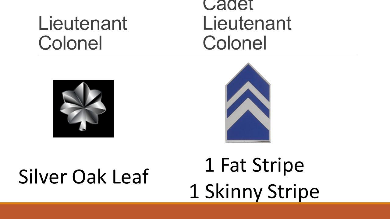 Lieutenant Colonel Cadet Lieutenant Colonel Silver Oak Leaf 1 Fat Stripe 1 Skinny Stripe