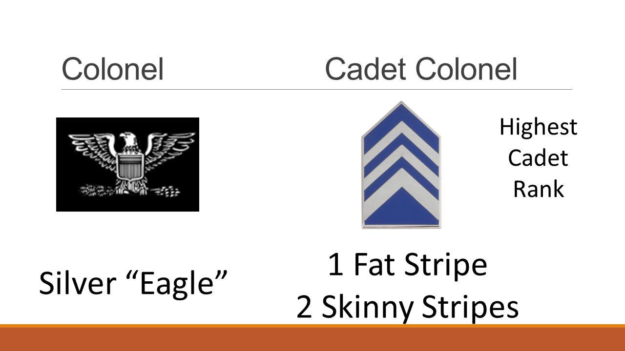 "ColonelCadet Colonel Silver ""Eagle"" 1 Fat Stripe 2 Skinny Stripes Highest Cadet Rank"
