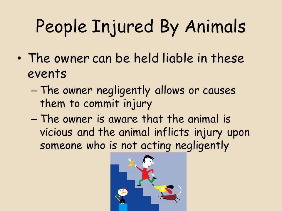 People Injured By Animals The owner can be held liable in these events – The owner negligently allows or causes them to commit injury – The owner is aware that the animal is vicious and the animal inflicts injury upon someone who is not acting negligently