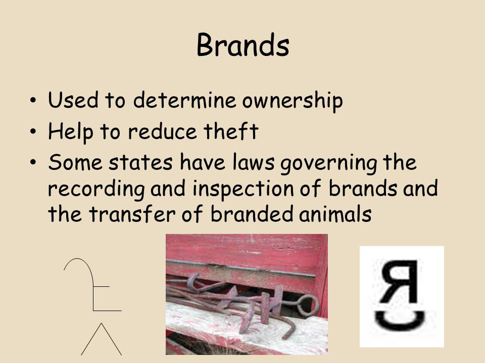 Brands Used to determine ownership Help to reduce theft Some states have laws governing the recording and inspection of brands and the transfer of branded animals