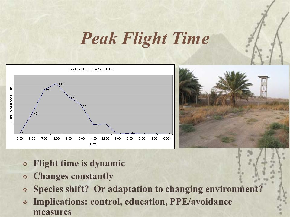 Peak Flight Time  Flight time is dynamic  Changes constantly  Species shift.