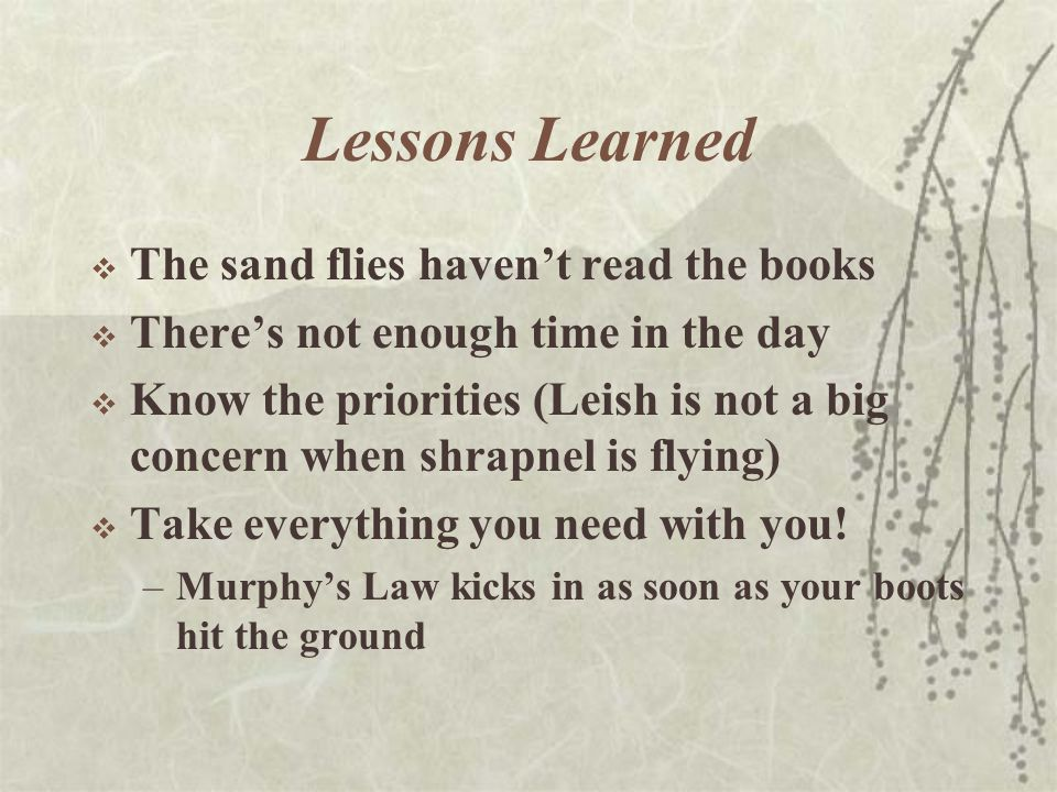 Lessons Learned  The sand flies haven't read the books  There's not enough time in the day  Know the priorities (Leish is not a big concern when shrapnel is flying)  Take everything you need with you.