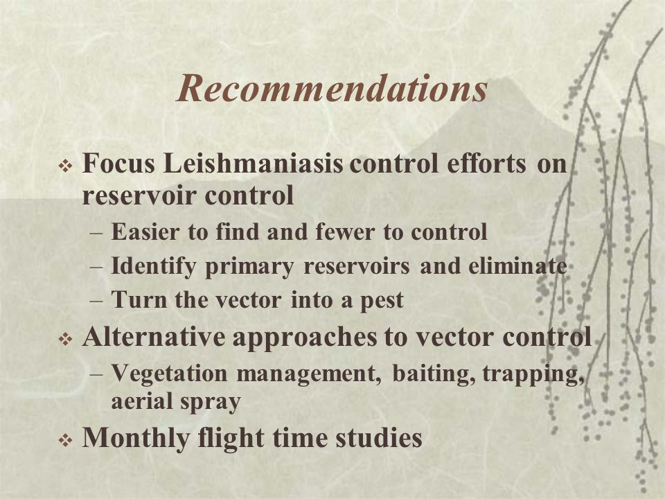 Recommendations  Focus Leishmaniasis control efforts on reservoir control –Easier to find and fewer to control –Identify primary reservoirs and eliminate –Turn the vector into a pest  Alternative approaches to vector control –Vegetation management, baiting, trapping, aerial spray  Monthly flight time studies