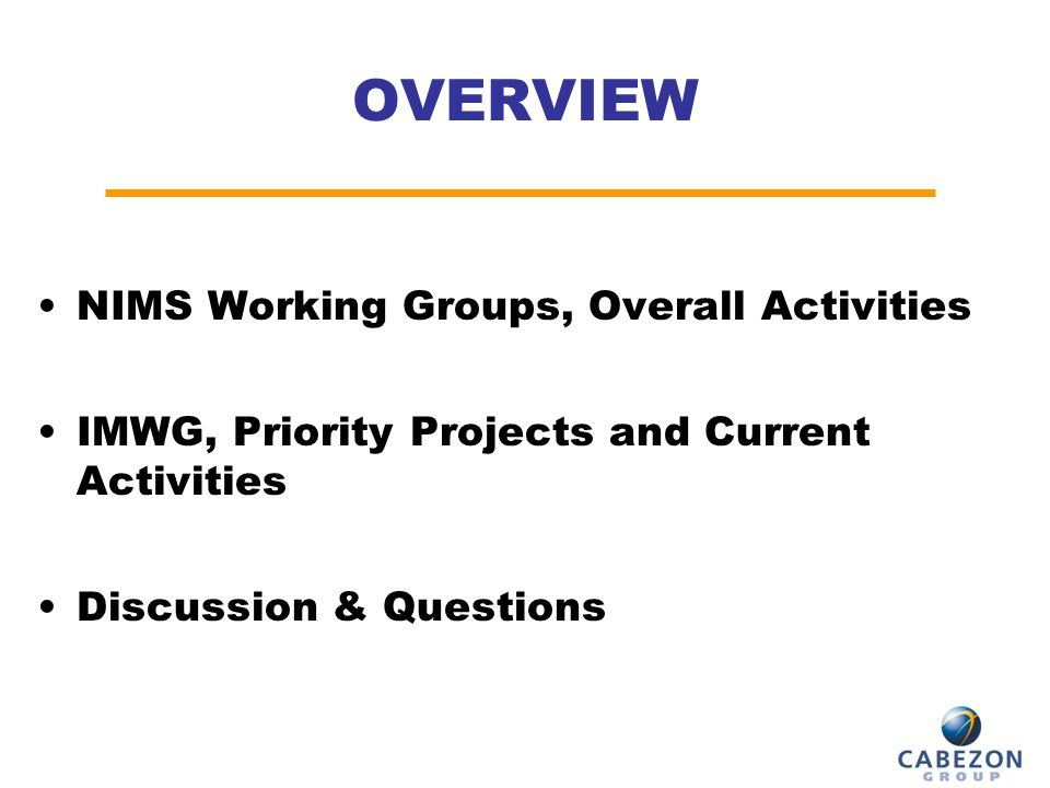 OVERVIEW NIMS Working Groups, Overall Activities IMWG, Priority Projects and Current Activities Discussion & Questions