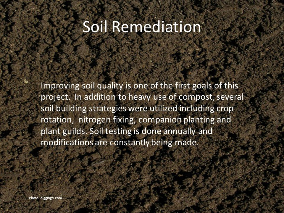 Soil Remediation Improving soil quality is one of the first goals of this project.