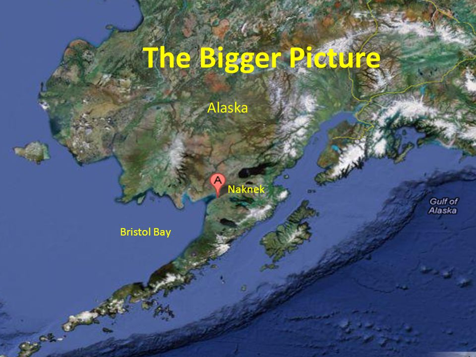 The Bigger Picture Alaska Bristol Bay Naknek