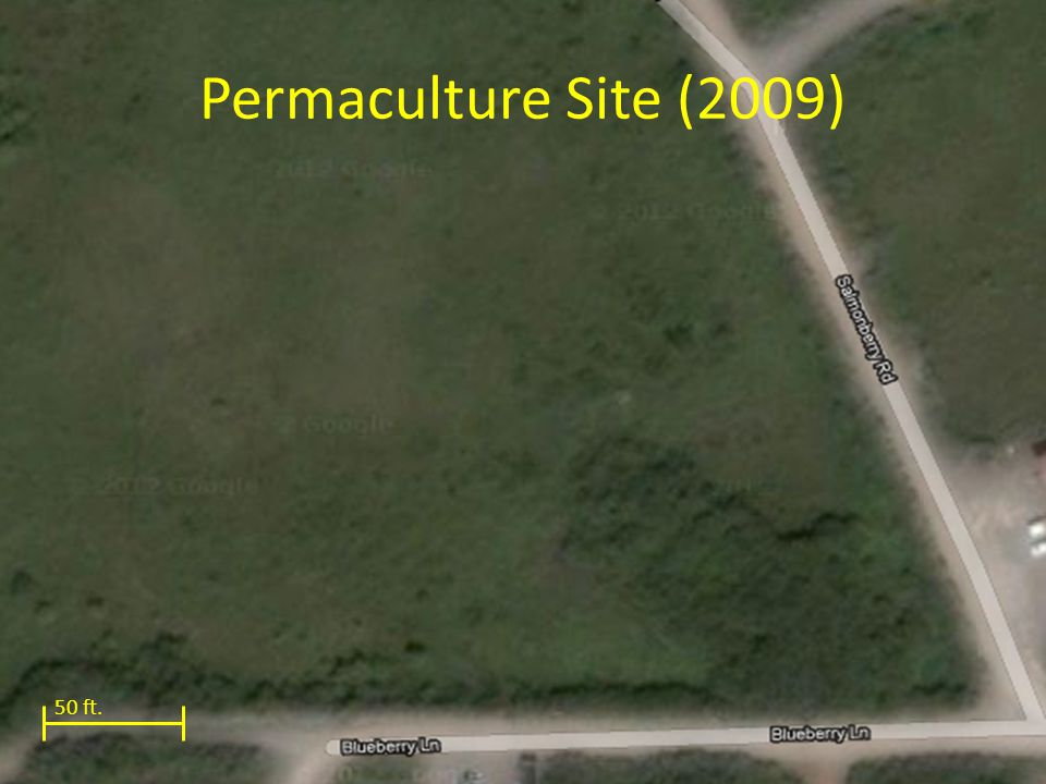 Permaculture Site (2009) 50 ft.