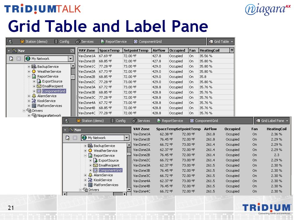 21 Grid Table and Label Pane