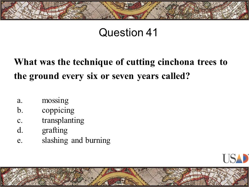 What was the technique of cutting cinchona trees to the ground every six or seven years called.