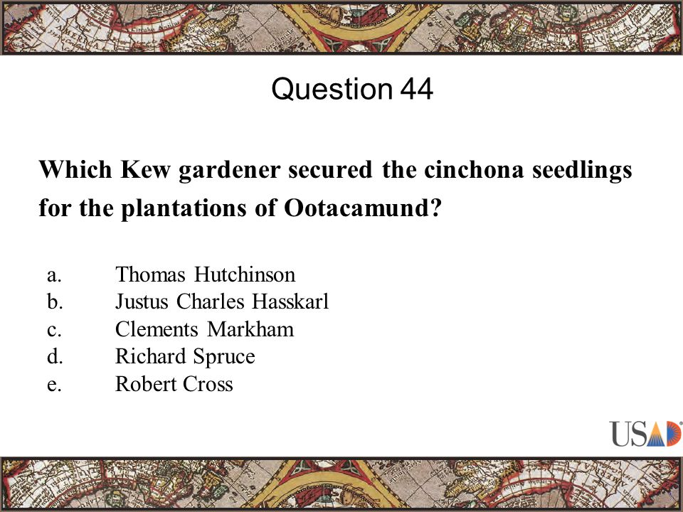 Which Kew gardener secured the cinchona seedlings for the plantations of Ootacamund.