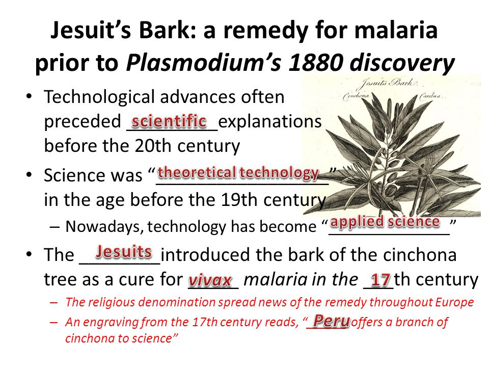 Jesuit's Bark: a remedy for malaria prior to Plasmodium's 1880 discovery Technological advances often preceded _________explanations before the 20th c