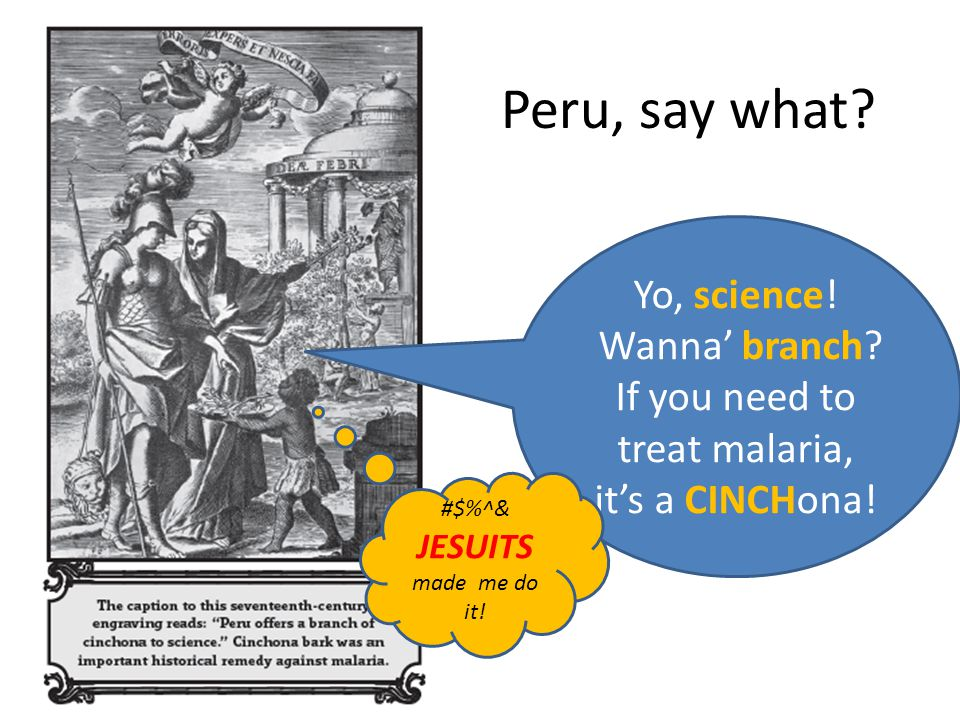 Peru, say what? Yo, science! Wanna' branch? If you need to treat malaria, it's a CINCHona! #$%^& JESUITS made me do it!