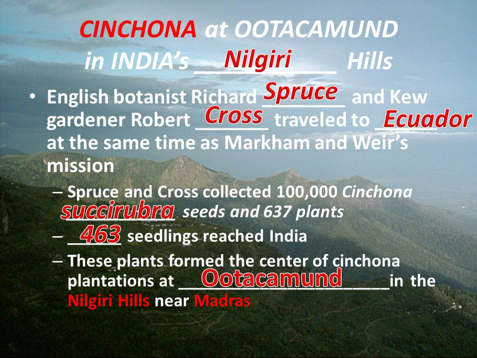 CINCHONA at OOTACAMUND in INDIA's ___________ Hills English botanist Richard ________ and Kew gardener Robert _______ traveled to ______ at the same t