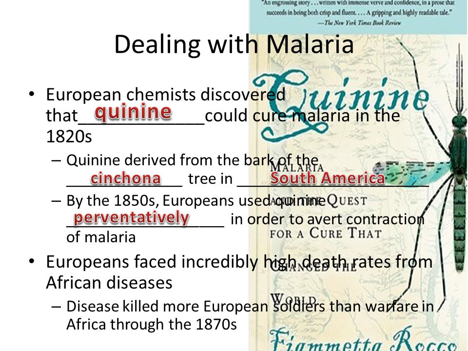 Dealing with Malaria European chemists discovered that_____________could cure malaria in the 1820s – Quinine derived from the bark of the ______________ tree in _______________________ – By the 1850s, Europeans used quinine ___________________ in order to avert contraction of malaria Europeans faced incredibly high death rates from African diseases – Disease killed more European soldiers than warfare in Africa through the 1870s