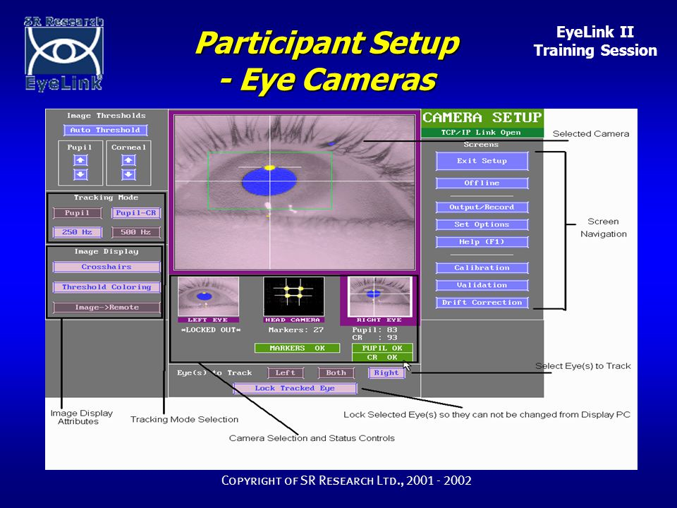 EyeLink II Training Session Copyright of SR Research Ltd., 2001 - 2002 Participant Setup - Eye Cameras