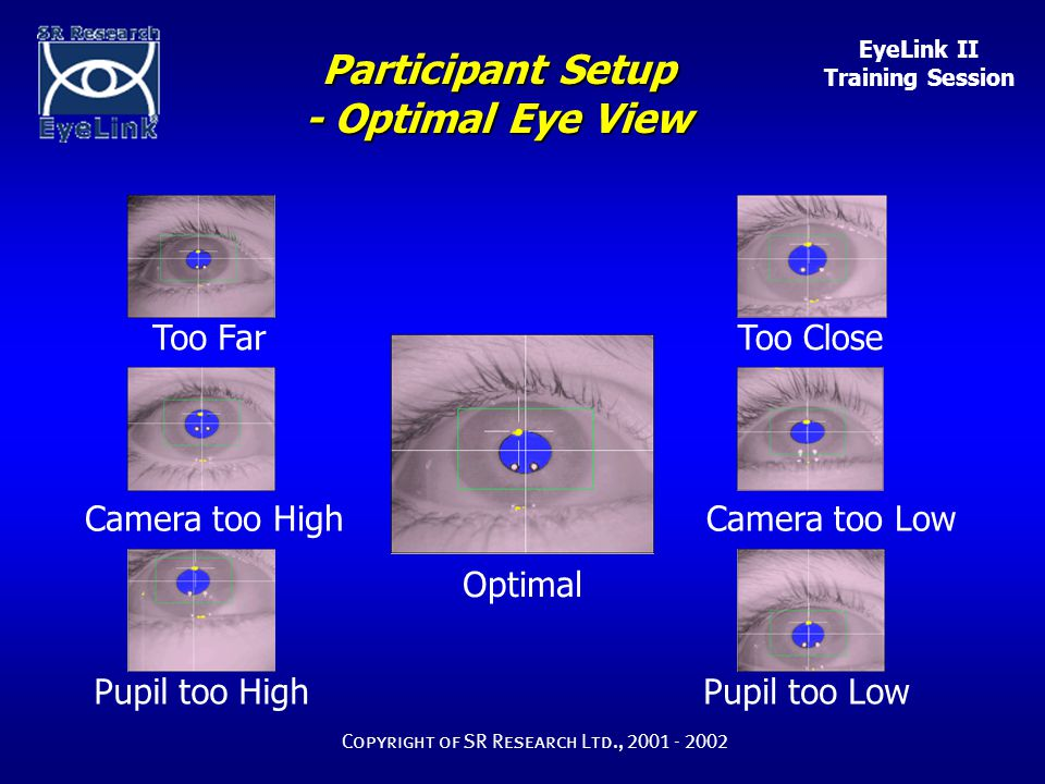 EyeLink II Training Session Copyright of SR Research Ltd., 2001 - 2002 Optimal Too FarToo Close Camera too HighCamera too Low Pupil too HighPupil too Low Participant Setup - Optimal Eye View