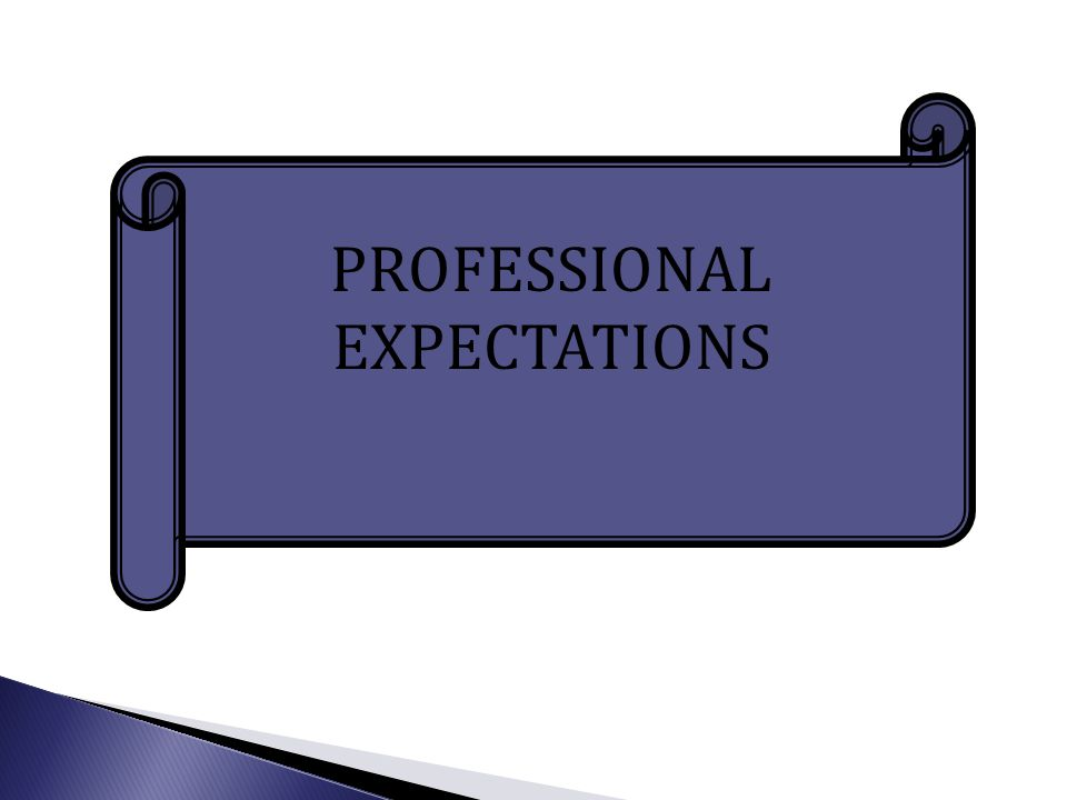 PROFESSIONAL EXPECTATIONS