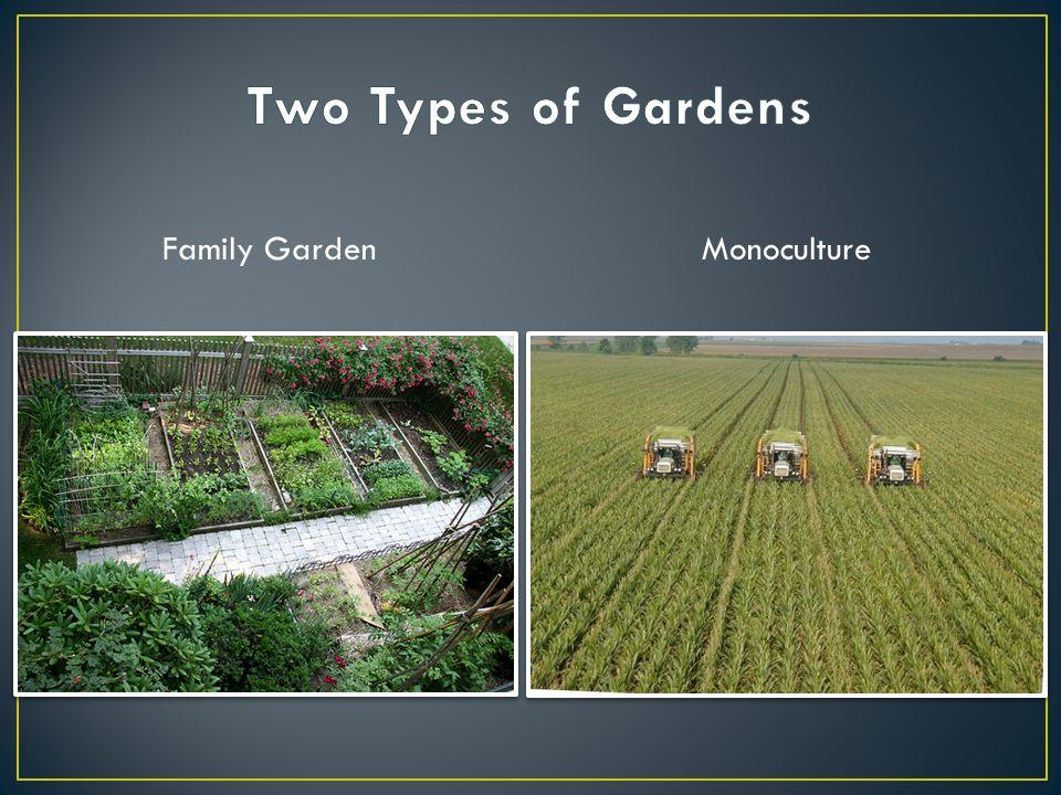 Family GardenMonoculture