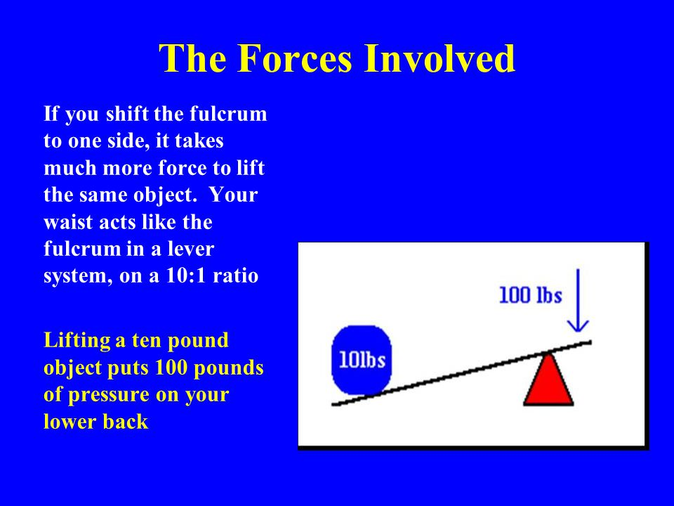 The Forces Involved If you shift the fulcrum to one side, it takes much more force to lift the same object. Your waist acts like the fulcrum in a leve