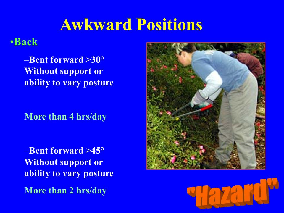 Awkward Positions Back –Bent forward >30° Without support or ability to vary posture More than 4 hrs/day –Bent forward >45° Without support or ability