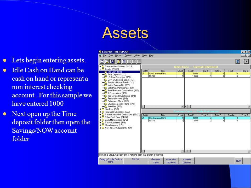 Assets Lets begin entering assets. Idle Cash on Hand can be cash on hand or represent a non interest checking account. For this sample we have entered
