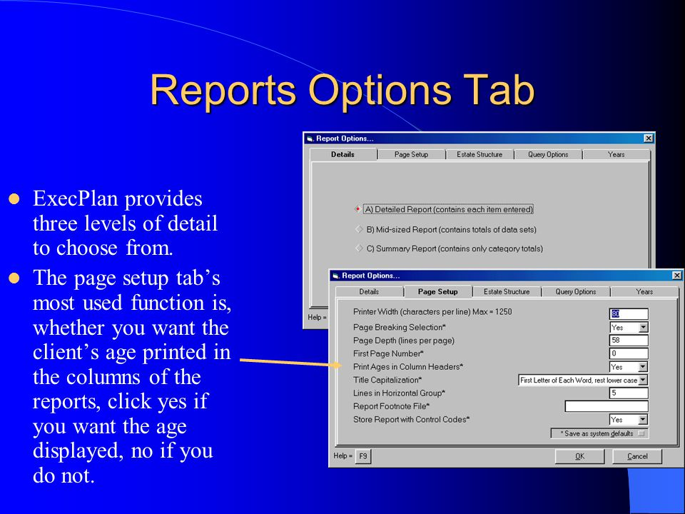 Reports Options Tab ExecPlan provides three levels of detail to choose from.