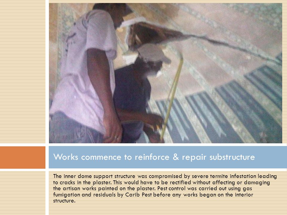 The inner dome support structure was compromised by severe termite infestation leading to cracks in the plaster.
