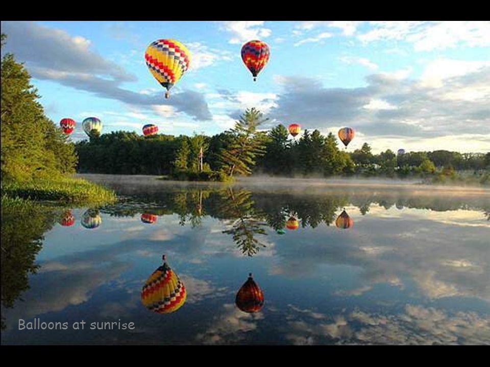 Balloons at sunri s e