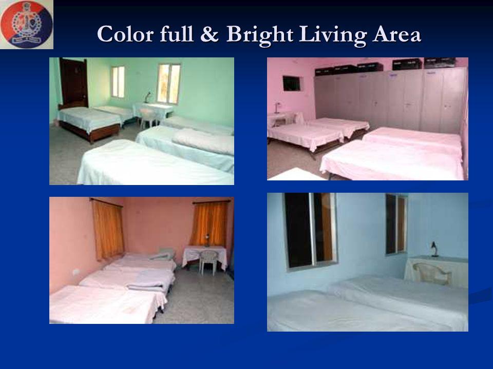 Color full & Bright Living Area