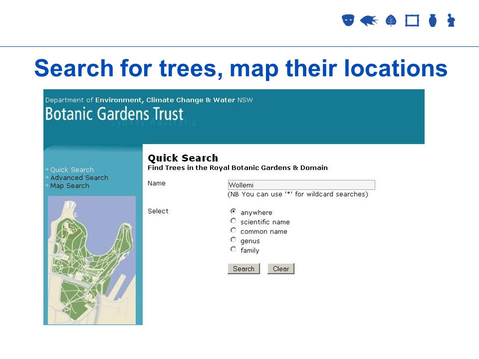 Collections Management 2 September 2005 Search for trees, map their locations