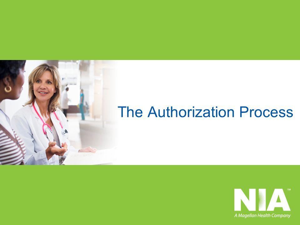 The Authorization Process