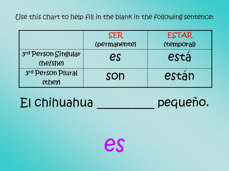 Use this chart to help fill in the blank in the following sentence: El chihuahua __________ pequeño.