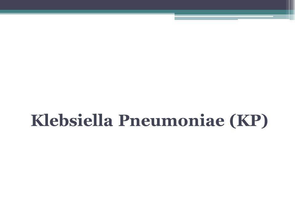 Klebsiella Pneumoniae (KP)