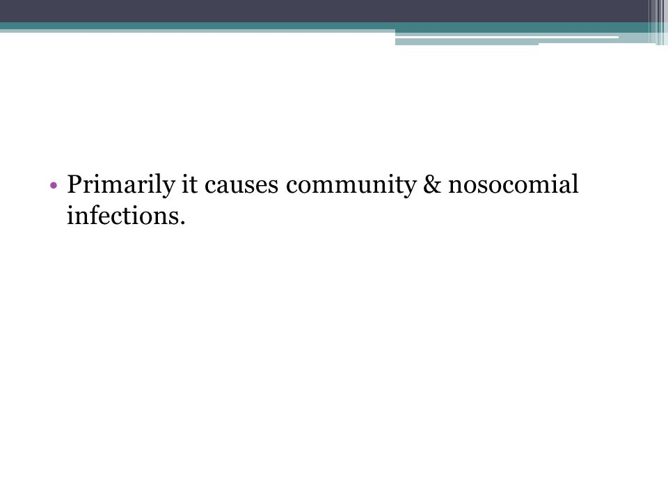 Primarily it causes community & nosocomial infections.